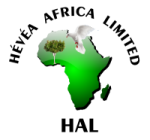 Hevea Africa Ltd